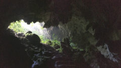 Entrance of St.Herman's Cave